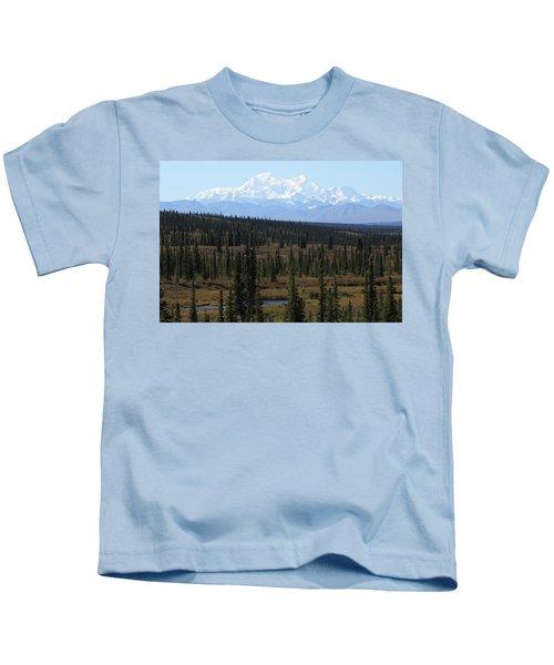 Denali From The Denali Highway Kids T-Shirt