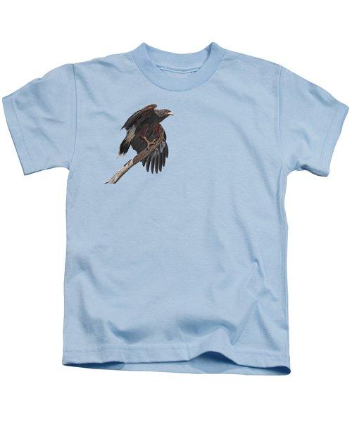 Harris Hawk - Transparent 2 Kids T-Shirt by Nikolyn McDonald