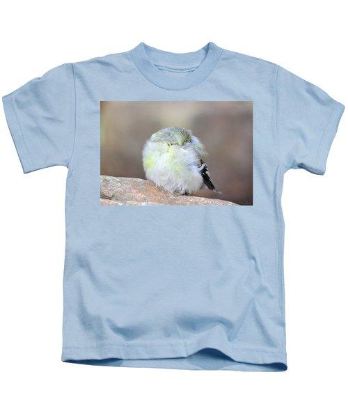 Little Sleeping Goldfinch Kids T-Shirt