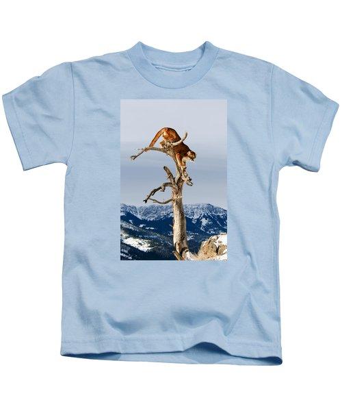 Mountain Lion In Tree Kids T-Shirt