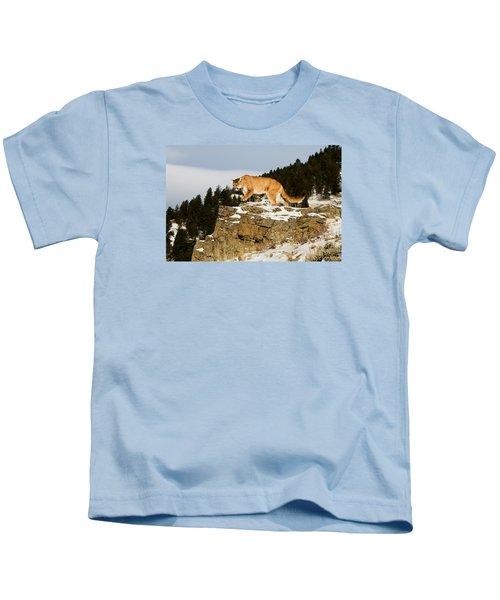 Mountain Lion On Rocks Kids T-Shirt