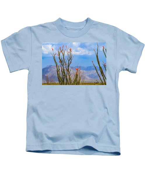 Ocotillo Cactus With Mountains And Sky Kids T-Shirt