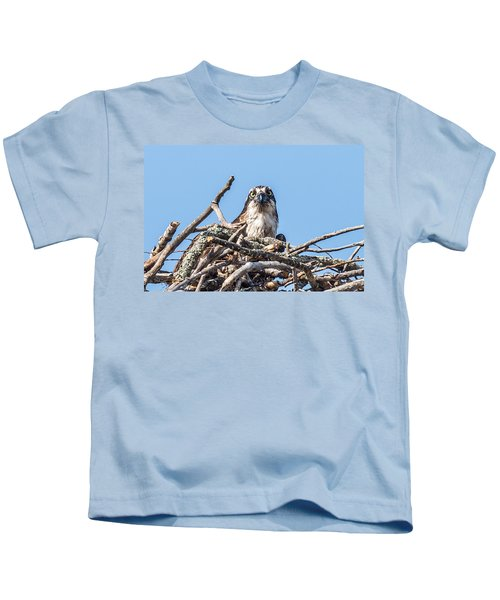 Osprey Eyes Kids T-Shirt by Paul Freidlund