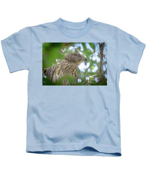 Red-shouldered Hawk Fledgling 1 Kids T-Shirt