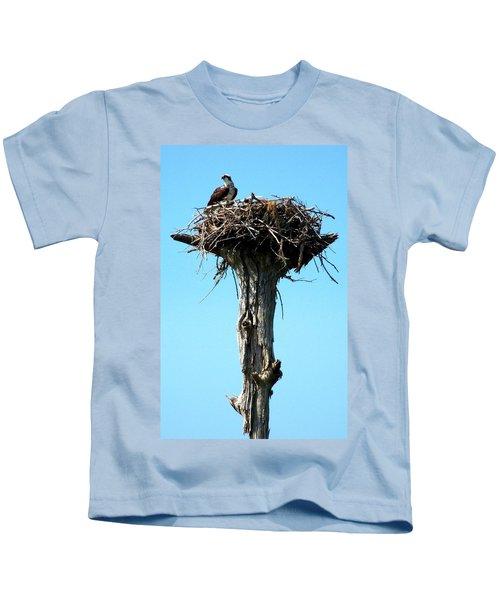 Osprey Point Kids T-Shirt by Karen Wiles