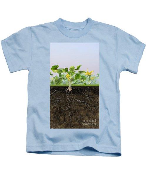 Pilewort Or Lesser Celandine Ranunculus Ficaria - Root System -  Kids T-Shirt