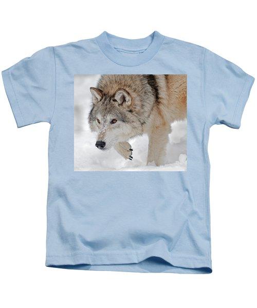 Prowling Wolf Kids T-Shirt
