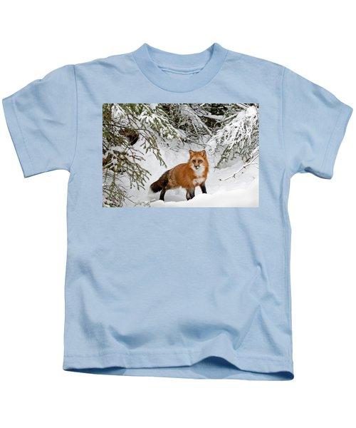 Red Fox In Winter Kids T-Shirt