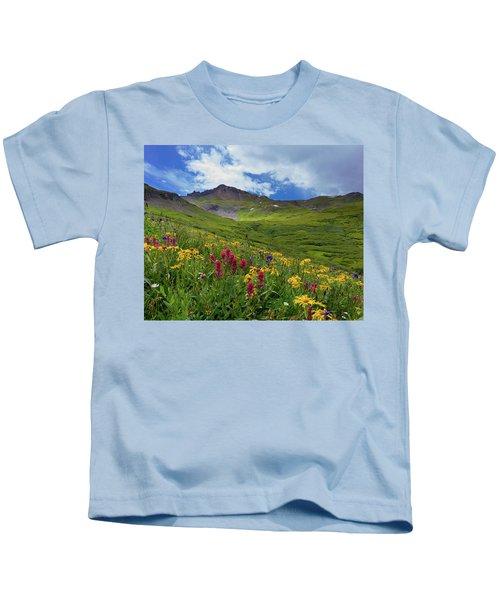 San Juan Wildflowers Kids T-Shirt