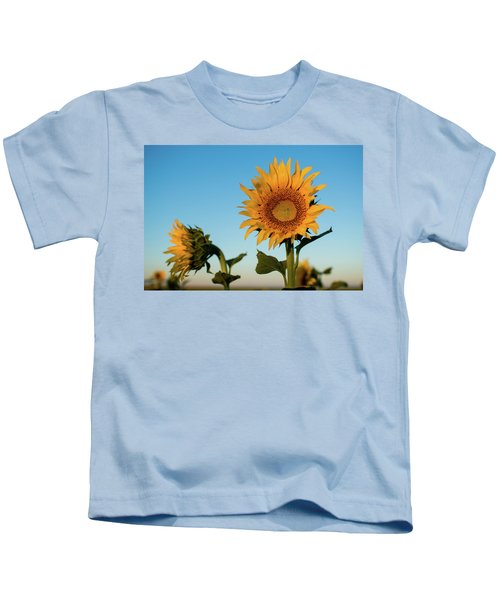 Sunflowers At Sunrise 1 Kids T-Shirt