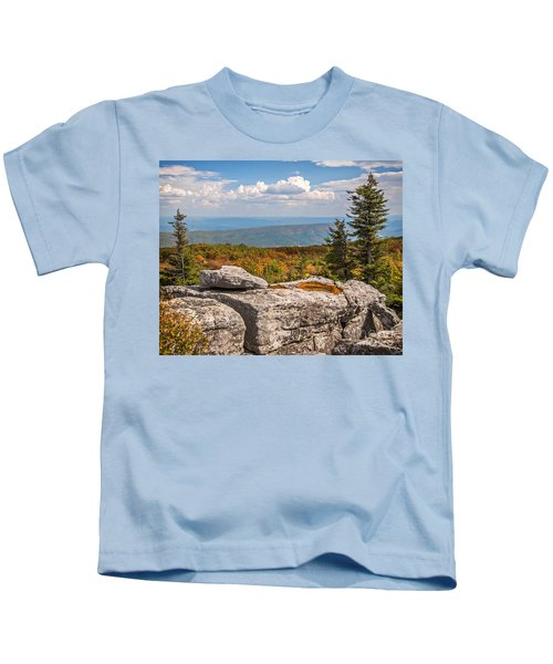 View From Bear Rocks 4173c Kids T-Shirt