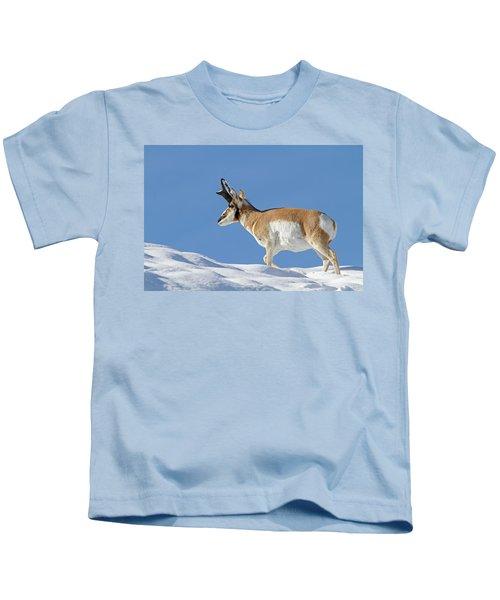 Winter Pronghorn Buck Kids T-Shirt