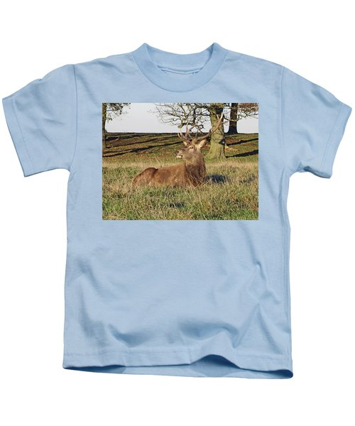 28/11/18  Tatton Park. Stag In The Park. Kids T-Shirt