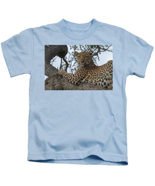 A Leopard Gazes From A Tree Kids T-Shirt