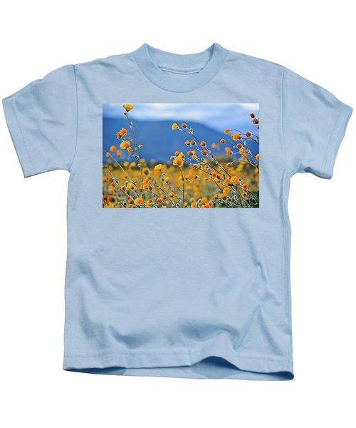 Anza Borrego Wild Desert Sunflowers Kids T-Shirt
