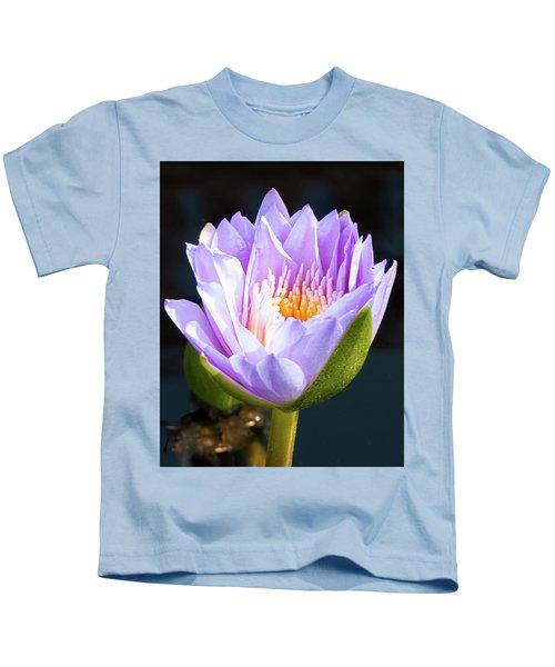 Brillance In Purple Kids T-Shirt
