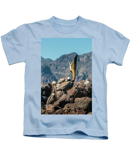 California Brown Pelicans In Ilsa Danzante Harbor Kids T-Shirt