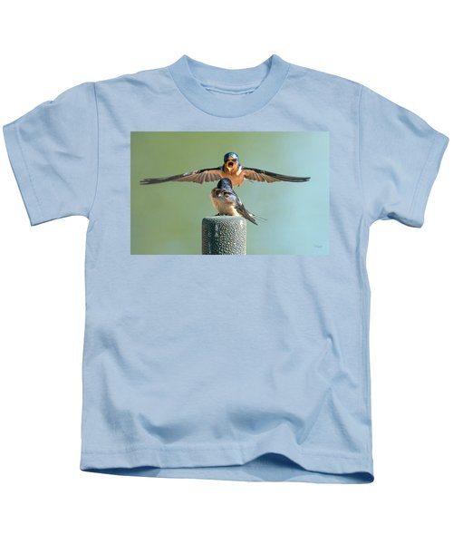 Hey, Babe, Let's Rock N Roll.  Barn Swallows Kids T-Shirt