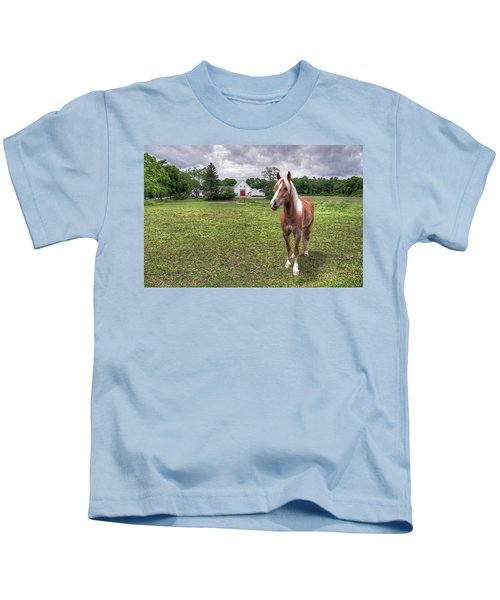 Horse In Pasture Kids T-Shirt