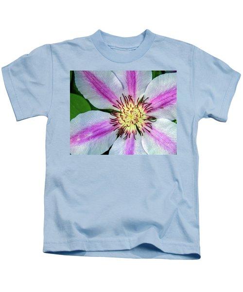 Pink Striped Clematis Close Up Kids T-Shirt