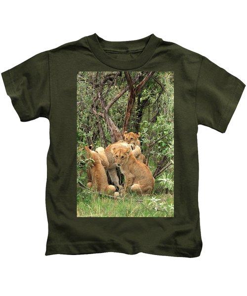 Masai Mara Lion Cubs Kids T-Shirt