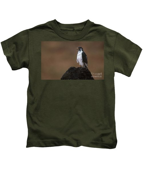 Augur Buzzard Kids T-Shirt by Art Wolfe