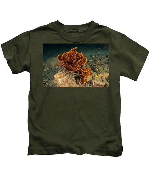 Bennetts Feather Star Kids T-Shirt