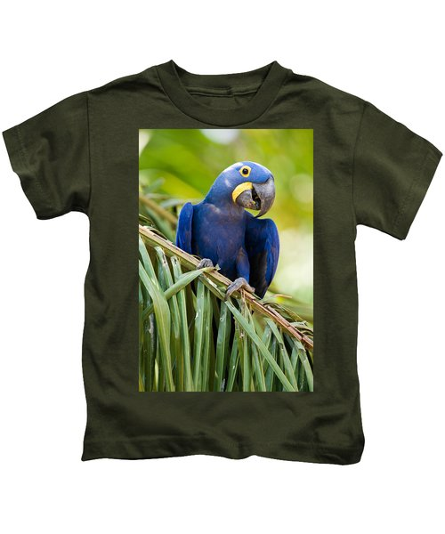 Close-up Of A Hyacinth Macaw Kids T-Shirt