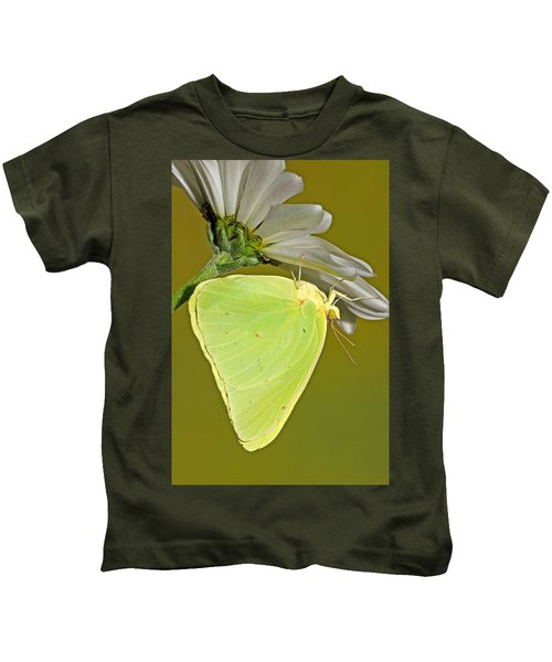 Cloudless Sulphur Butterfly Kids T-Shirt