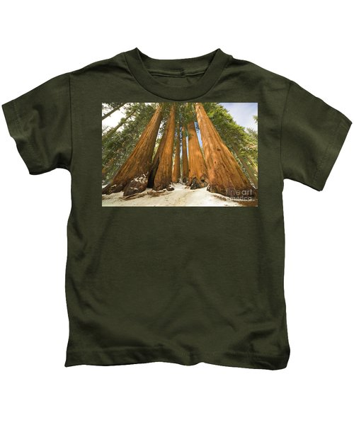 Giant Sequoias Sequoia N P Kids T-Shirt