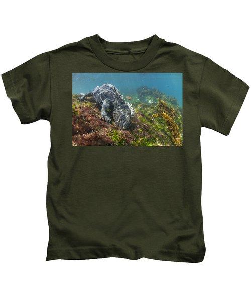 Marine Iguana Feeding On Algae Punta Kids T-Shirt