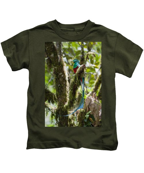 Resplendent Quetzal Male Costa Rica Kids T-Shirt