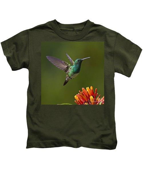 Snowy-bellied Hummingbird Kids T-Shirt