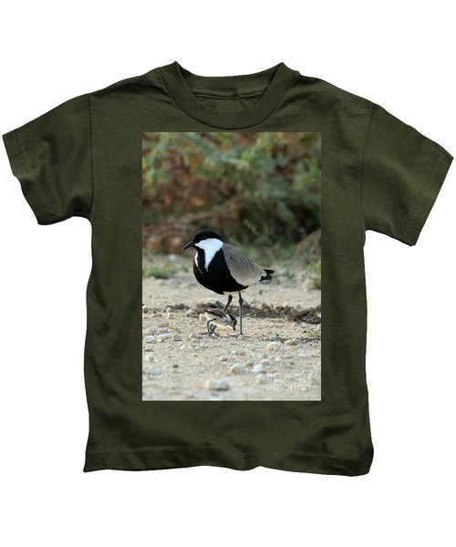 Spur-winged Plover And Chick Kids T-Shirt