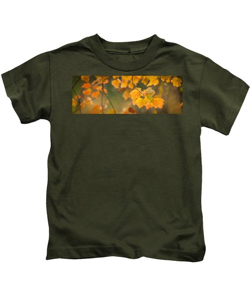 Golden Fall Leaves Kids T-Shirt