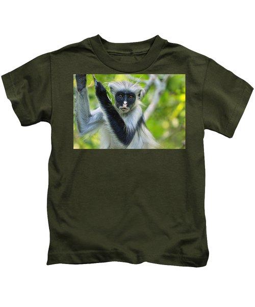 Zanzibar Red Colobus In Tree Jozani Kids T-Shirt