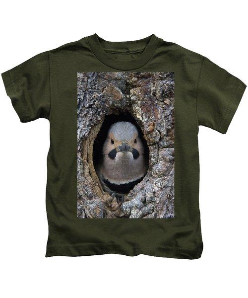 Northern Flicker In Nest Cavity Alaska Kids T-Shirt