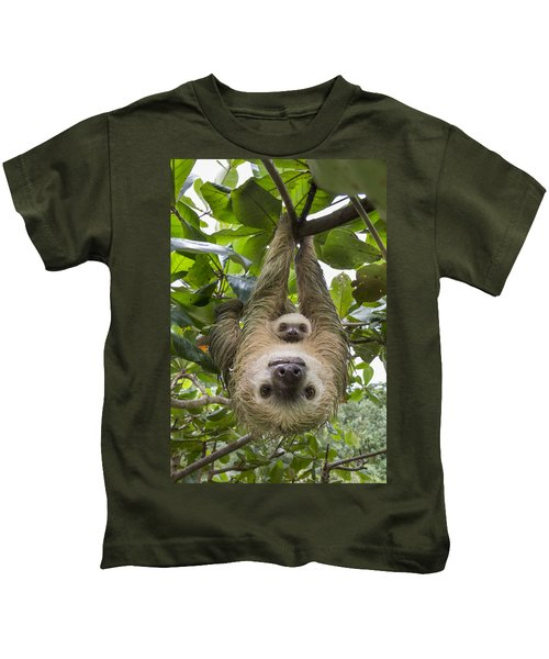 Hoffmanns Two-toed Sloth And Old Baby Kids T-Shirt