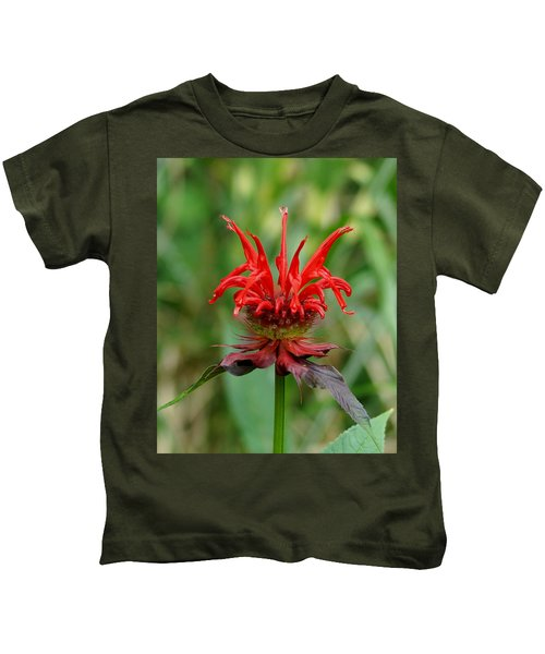 A Flowering Red Castle Beauty Kids T-Shirt