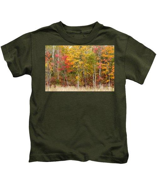 Autumn In Muskoka Kids T-Shirt