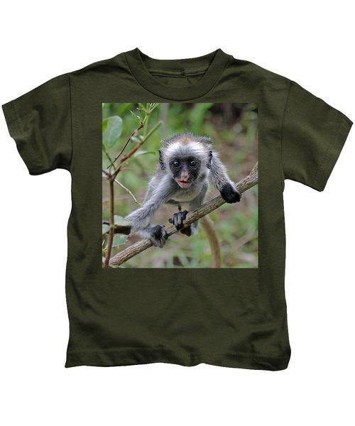 Baby Red Colobus Monkey Kids T-Shirt