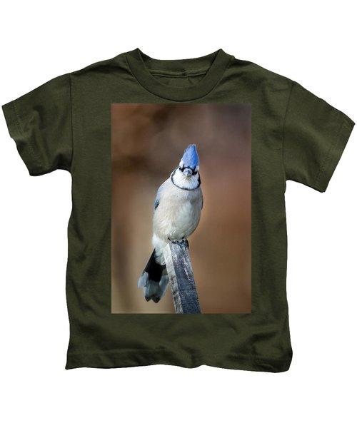 Backyard Birds Blue Jay Kids T-Shirt by Bill Wakeley