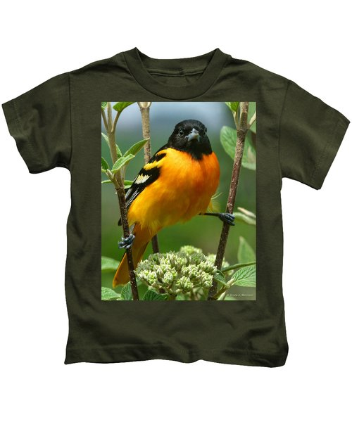 Baltimore Oriole Kids T-Shirt