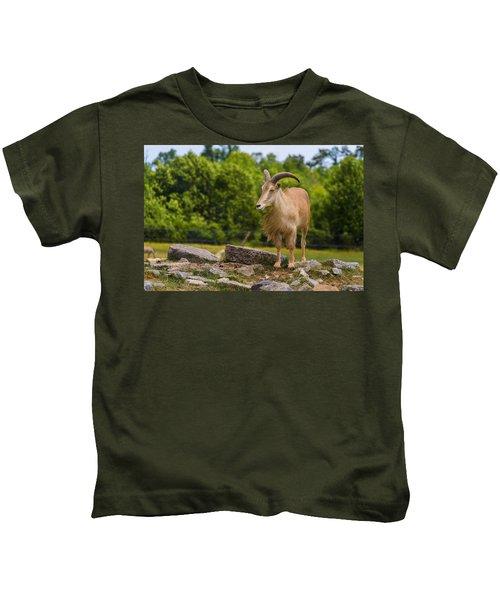 Barbary Sheep Kids T-Shirt