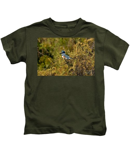 Belted Kingfisher Female Kids T-Shirt by Anthony Mercieca