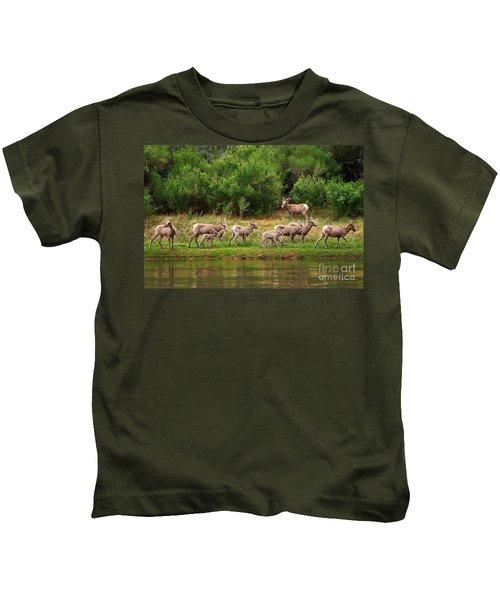 Bighorn Herd Kids T-Shirt