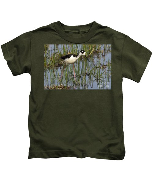 Black-necked Stilt Kids T-Shirt