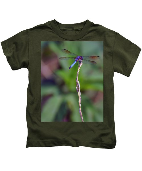 Blue Dragonfly On A Blade Of Grass  Kids T-Shirt