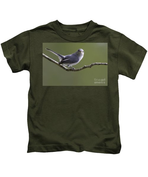 Blue-gray Gnatcatcher Kids T-Shirt
