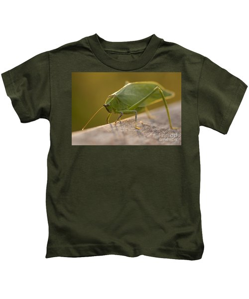 Broad-winged Katydid Kids T-Shirt